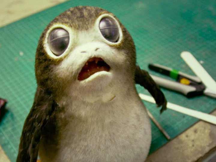 Así son los porgs, las nuevas criaturas de 'Star Wars' | El Imparcial de Oaxaca
