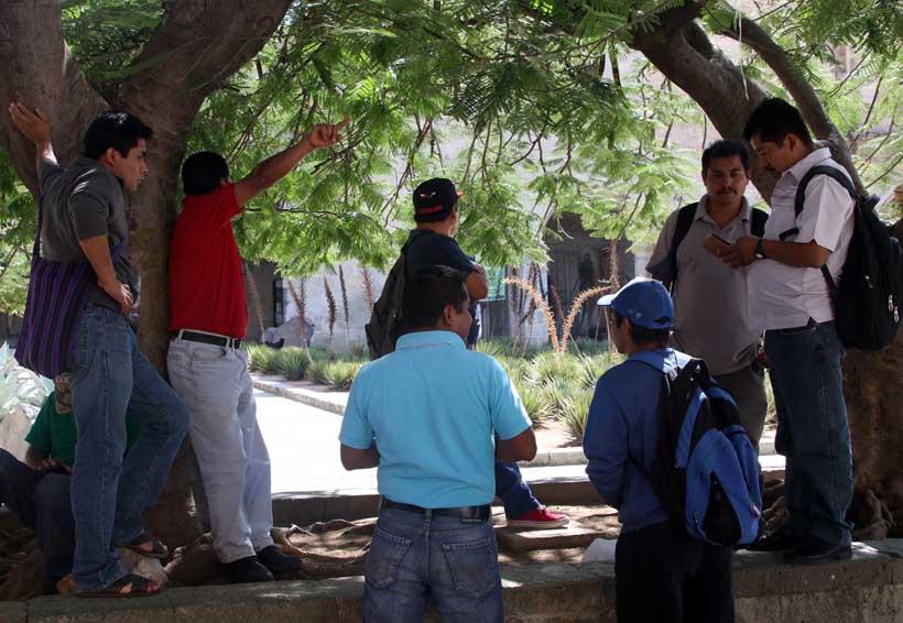Persisten conflictos en 20 municipios administrados | El Imparcial de Oaxaca