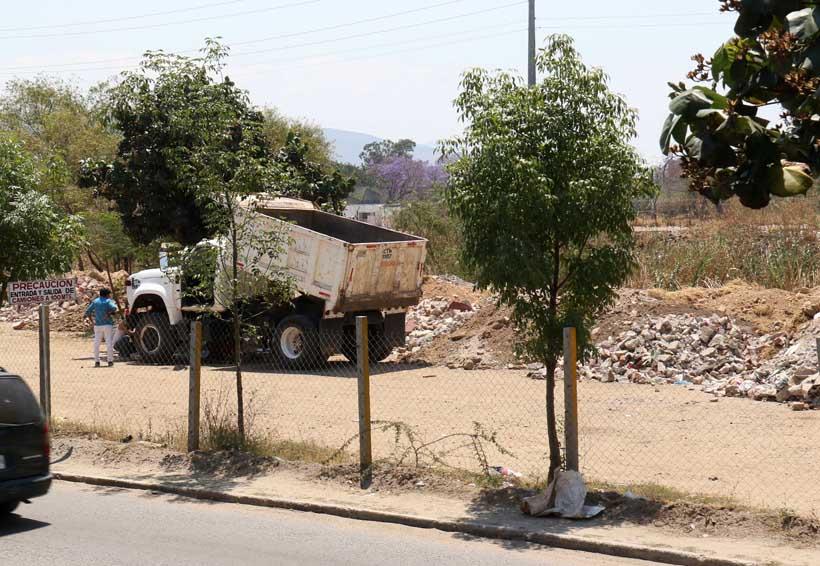 Valles, Cuenca e Istmo  concentran tierras  sin certeza jurídica | El Imparcial de Oaxaca