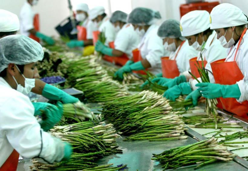 México y EU realizarán segunda reunión binacional de comercio agroalimentario | El Imparcial de Oaxaca