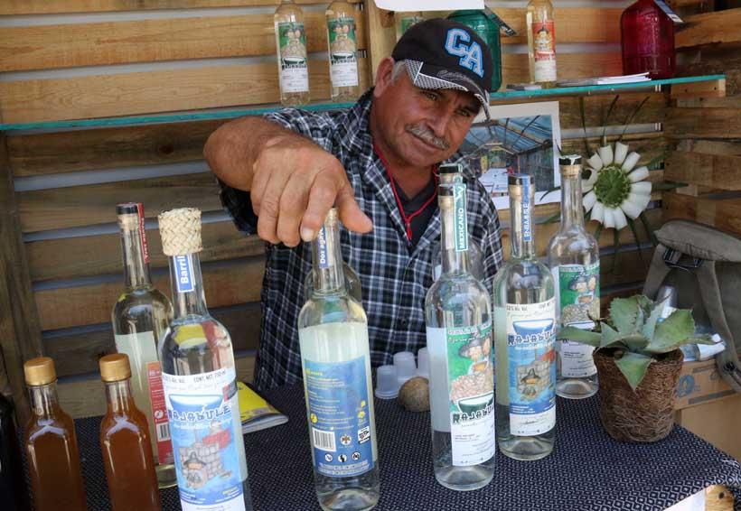 En la edición 2018 de la Feria del Mezcal sólo participarán productores certificados | El Imparcial de Oaxaca
