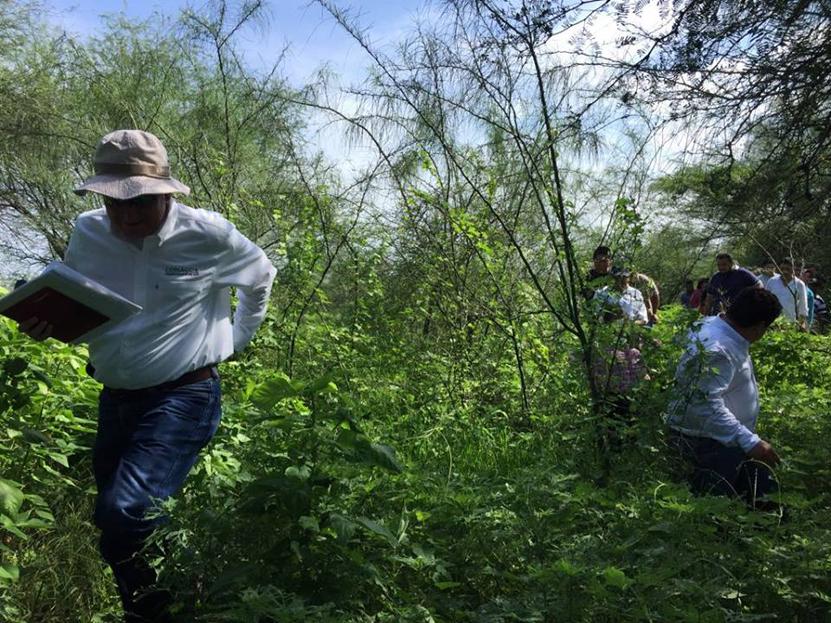 Anuncian la construcción de cuatro pozos en Salina Cruz | El Imparcial de Oaxaca