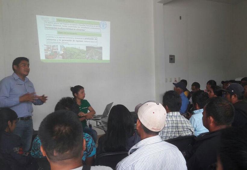 En ruta de trabajo en el campo, nueve municipios de la Mixteca | El Imparcial de Oaxaca