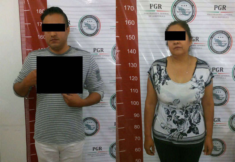 Detienen a pareja por los delitos de Captación Irregular de Recursos | El Imparcial de Oaxaca