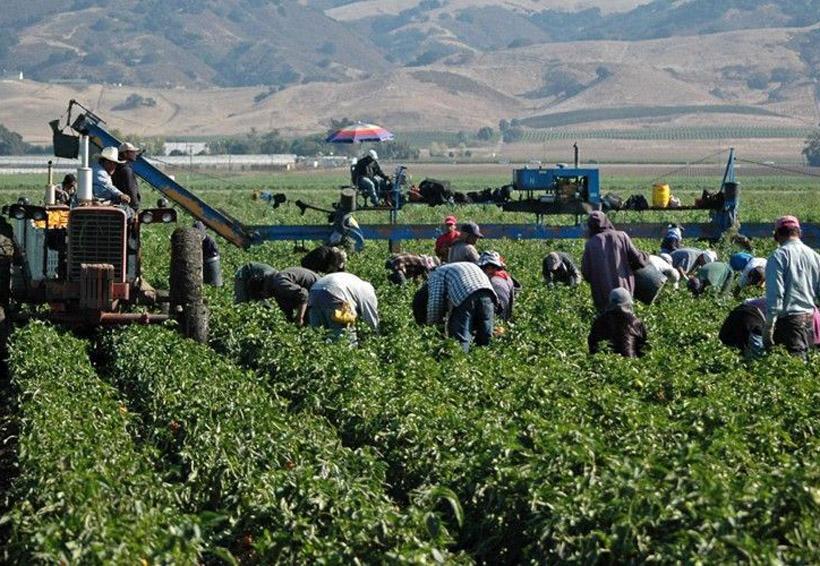 EU anuncia 15 mil visados para trabajadores extranjeros | El Imparcial de Oaxaca