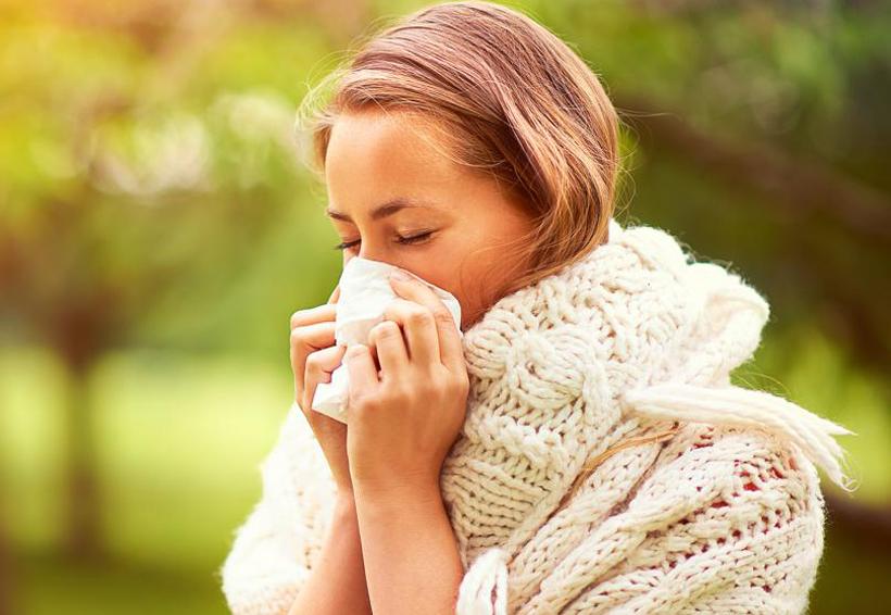 5 cosas que provocan alergias y cómo evitarlas | El Imparcial de Oaxaca