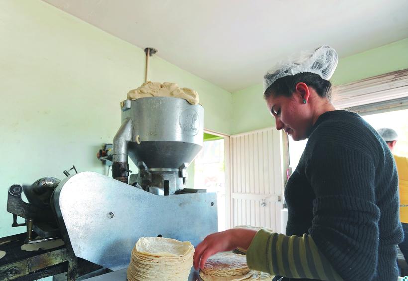 Ventas bajas y la alza de  insumos afecta a tortilleros de la Cuenca   El Imparcial de Oaxaca