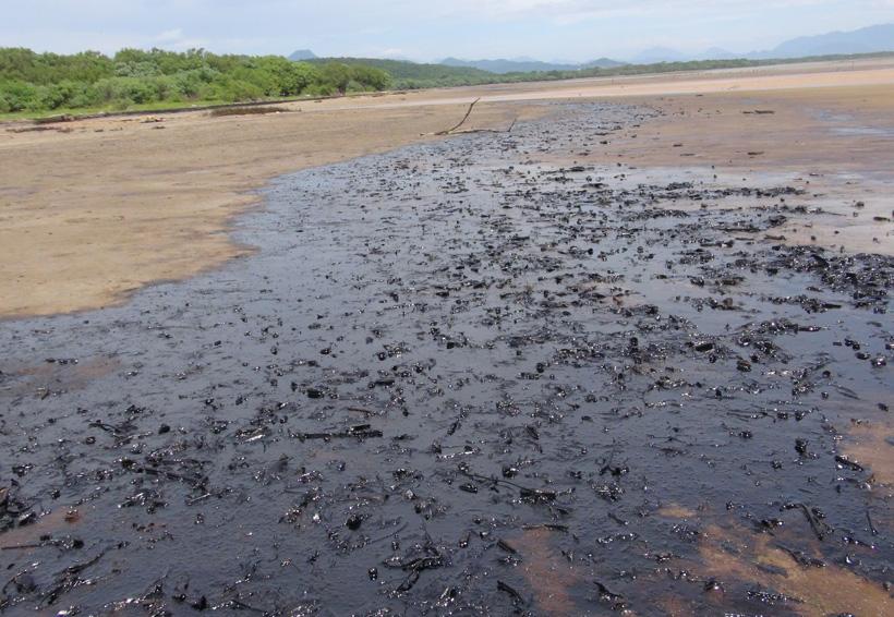 Pescadores del Istmo piden a Pemex repoblar de especies marinas   El Imparcial de Oaxaca