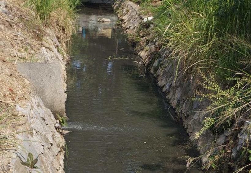 En la Cuenca desazolvan los arroyos  para evitar inundaciones | El Imparcial de Oaxaca