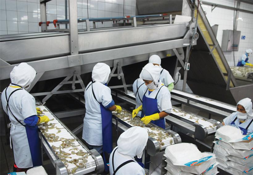 Contratarán mano  de obra de Salina Cruz para procesadora de atún | El Imparcial de Oaxaca