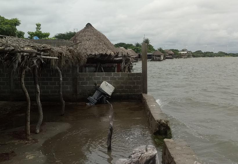 Acusan en Playa Vicente apatía de autoridades   El Imparcial de Oaxaca