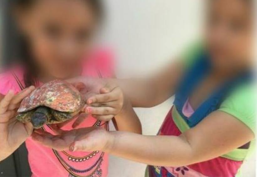 Niños pintan caparazones de tortugas y generan polémica | El Imparcial de Oaxaca