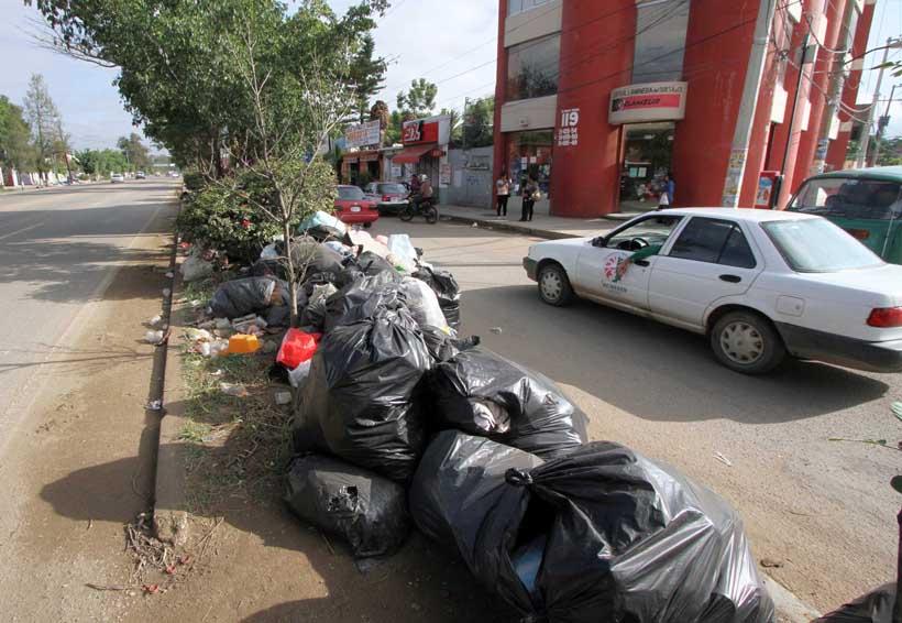 En Oaxaca, llaman a no tirar basura en las calles | El Imparcial de Oaxaca