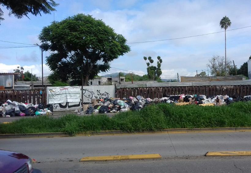 Basura provoca molestia  en la colonia Libertad | El Imparcial de Oaxaca
