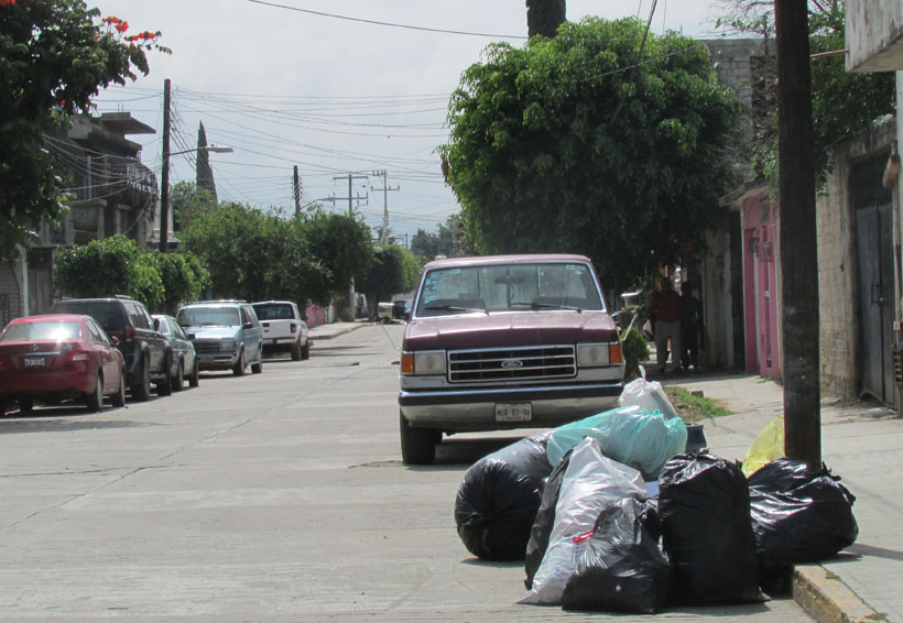 Temen enfermedades por acumulación de basura en calles de Cinco Señores, Oaxaca | El Imparcial de Oaxaca