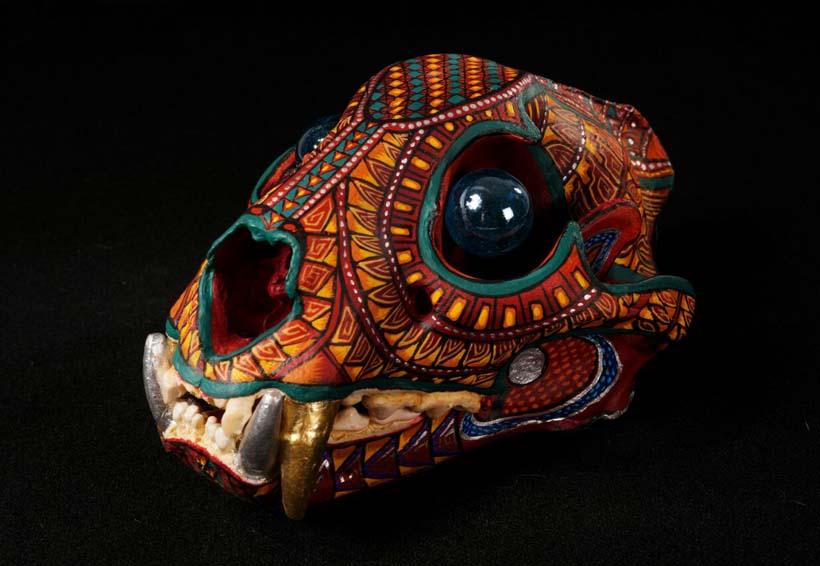 Apoyan artistas proyecto de conservación del jaguar | El Imparcial de Oaxaca