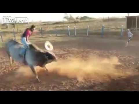 Un toro propina una coz mortal a un joven que intentaba montarlo   El Imparcial de Oaxaca