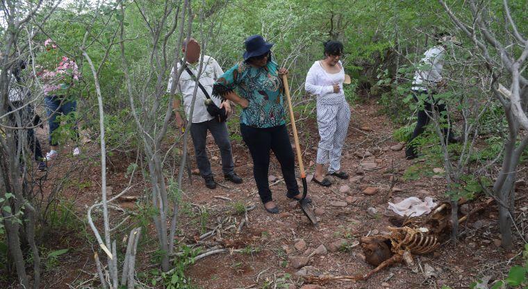 Rastreadoras van por los 100 hallazgos en tres años | El Imparcial de Oaxaca