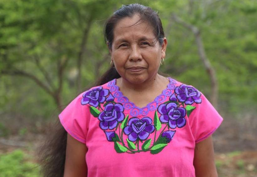Rebeldía ante el despojo: ella es Marichuy, la mujer indígena que va por la presidencia en 2018 | El Imparcial de Oaxaca
