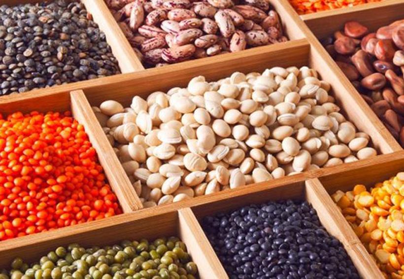 Estas legumbres debes incluir en tu dieta | El Imparcial de Oaxaca