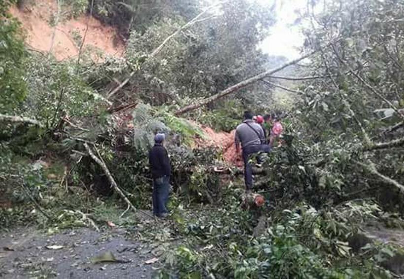 Sismo y lluvias devastan la región de los Mixes en Oaxaca | El Imparcial de Oaxaca