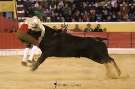 Un joven torero portugués muere por una cornada fatal   El Imparcial de Oaxaca