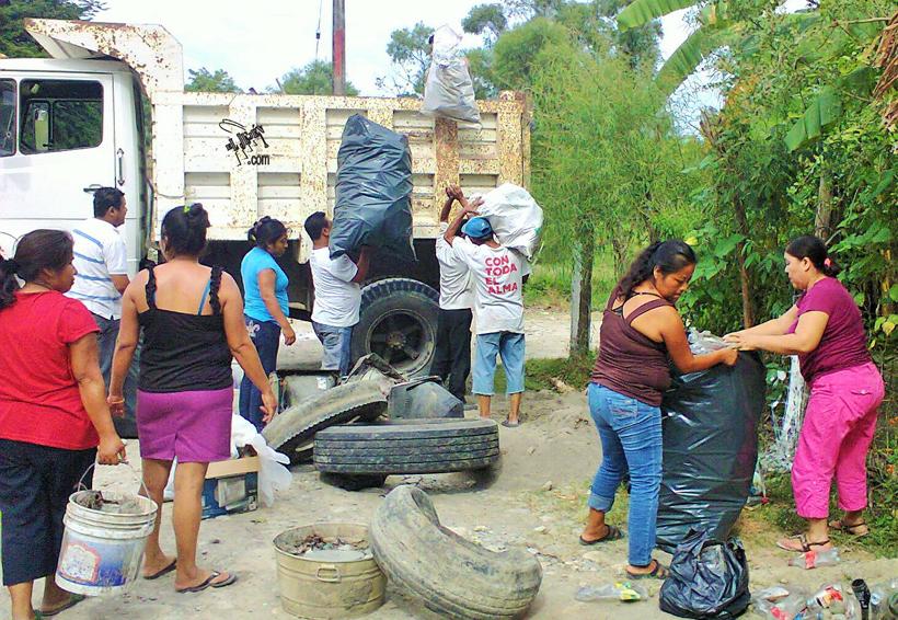 Más casos de enfermedades por mosquitos en la Cuenca   El Imparcial de Oaxaca