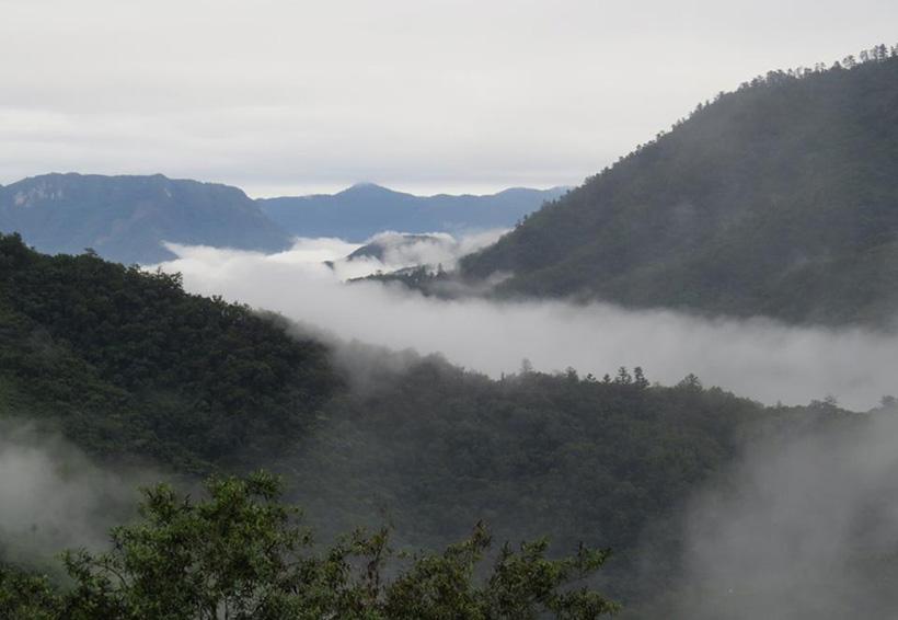 Impulsan las áreas comunitarias protegidas en Oaxaca   El Imparcial de Oaxaca