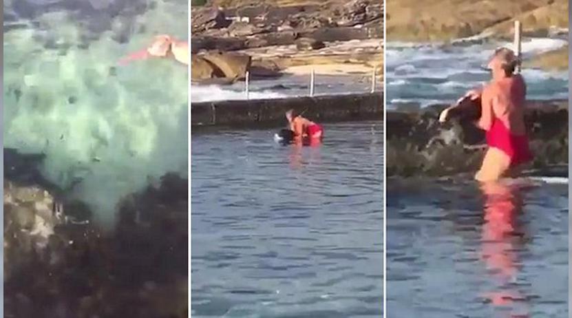 Una mujer saca a un tiburón de una piscina natural por un inesperado motivo | El Imparcial de Oaxaca