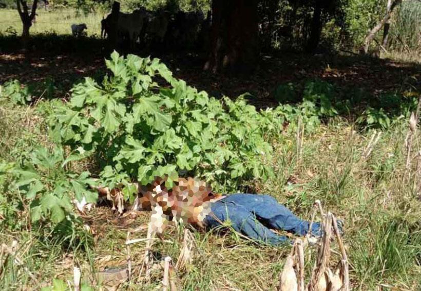 Hallan cadáver putrefacto entre la maleza | El Imparcial de Oaxaca