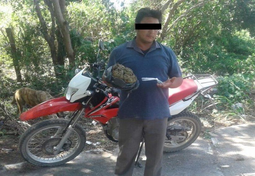 Joven llevaba medio kilo de 'mota'; arrestado en el Istmo de Tehuantepec | El Imparcial de Oaxaca