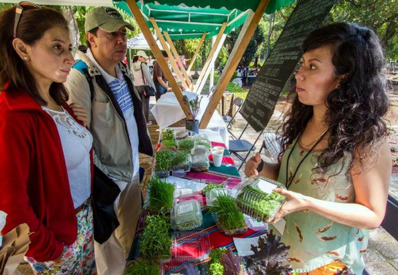Promoverán trueque en tianguis alternativo en Tlaxiaco, Oaxaca | El Imparcial de Oaxaca