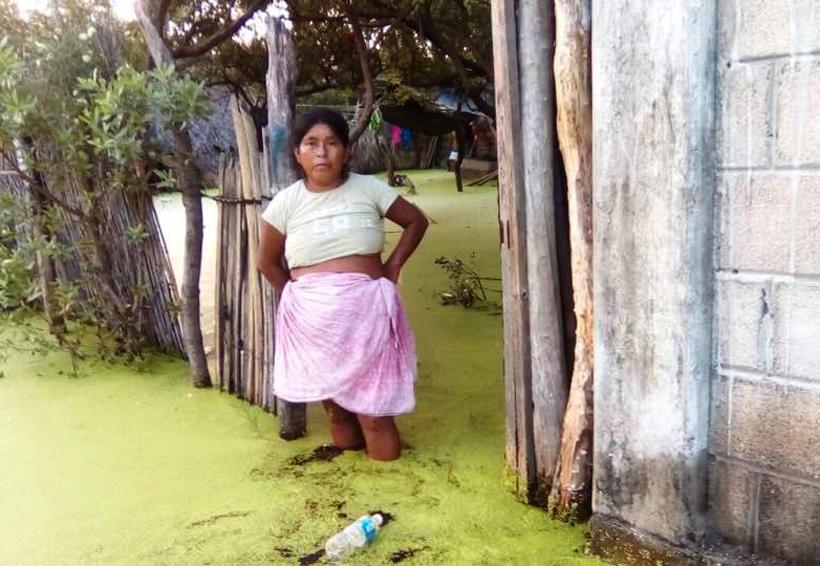 En San Mateo hace falta ayuda humanitaria   El Imparcial de Oaxaca