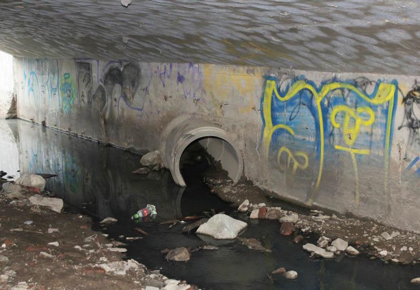 Convertido en foco de infección, el arroyo San Luis Potosí en Santa Lucía del Camino | El Imparcial de Oaxaca