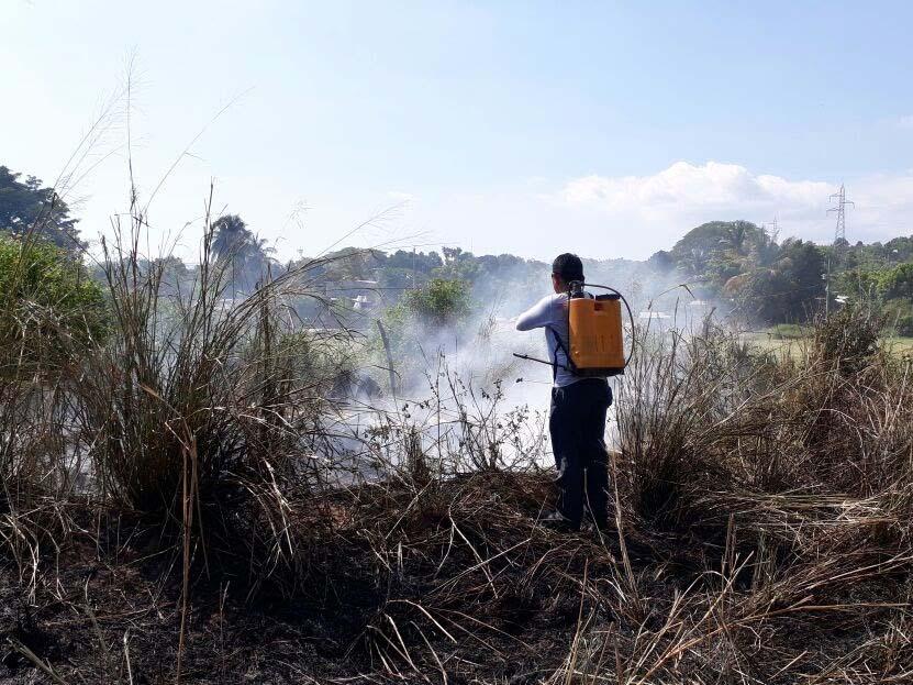 Arde un pastizal en Tututepec, Oaxaca | El Imparcial de Oaxaca