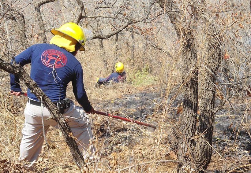 Oaxaca al borde de una alerta forestal | El Imparcial de Oaxaca