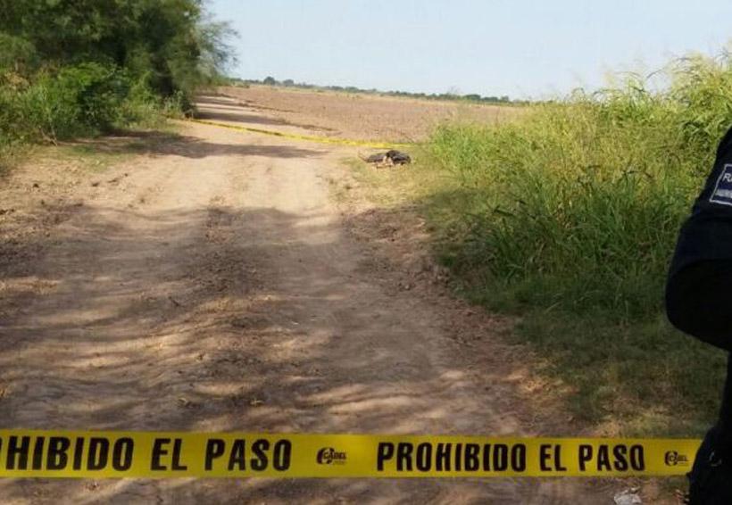 Lo abandonan envuelto en un hule   El Imparcial de Oaxaca