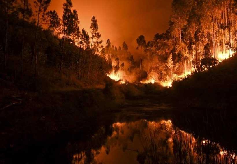 Duelo nacional en Portugal por muertos en incendios forestales | El Imparcial de Oaxaca