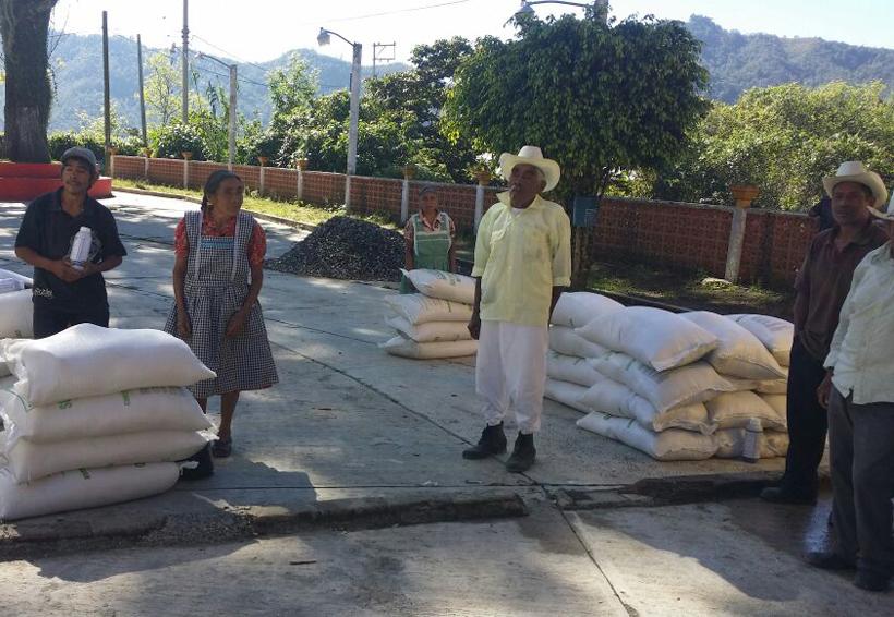 Agricultores de Ocopetatillo recibieron fertilizantes   El Imparcial de Oaxaca