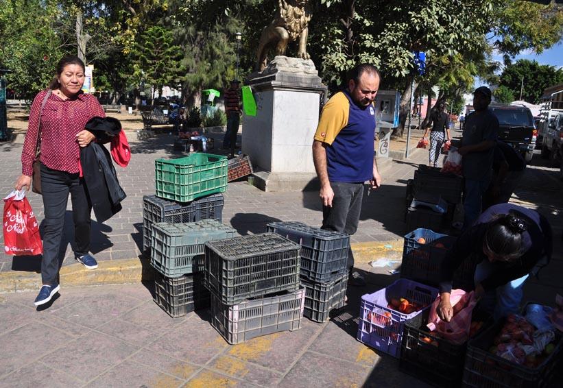 Tomateros expenden  producto en el parque El Llano, Oaxaca | El Imparcial de Oaxaca