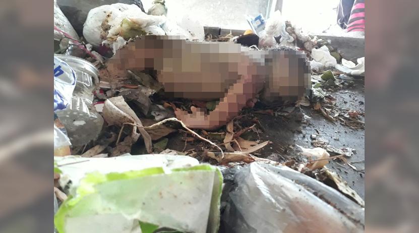 Hallan muerto a recién nacido en Huajuapan de León, Oaxaca | El Imparcial de Oaxaca