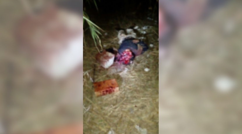 Niños descubren cuerpo de jovén con el cráneo destrozado en San Agustín Yatareni, Oaxaca | El Imparcial de Oaxaca