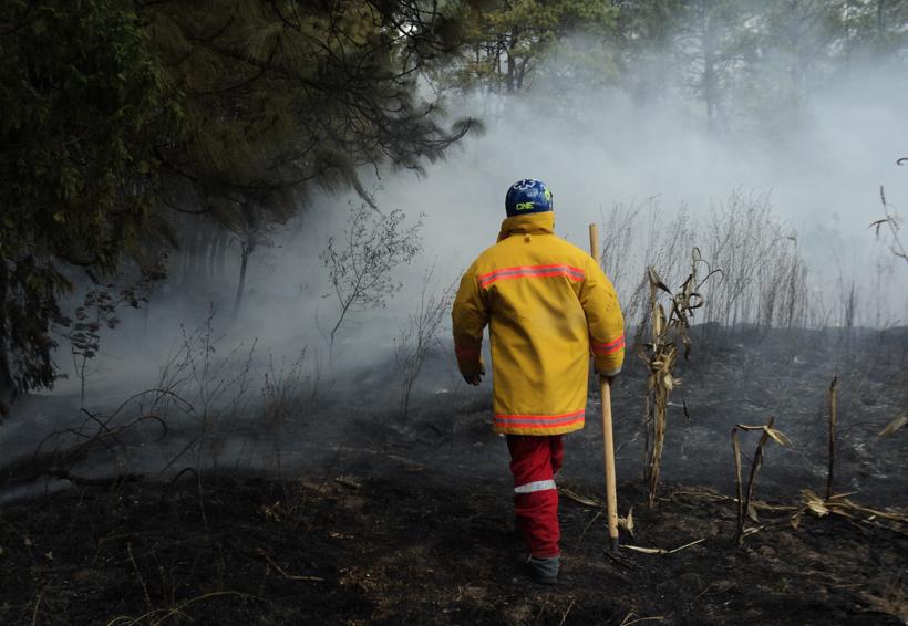 ¡Cuidado con los incendios!   El Imparcial de Oaxaca