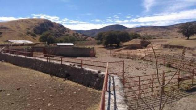 En Chihuahua, aseguran otros cuatro ranchos de César Duarte | El Imparcial de Oaxaca