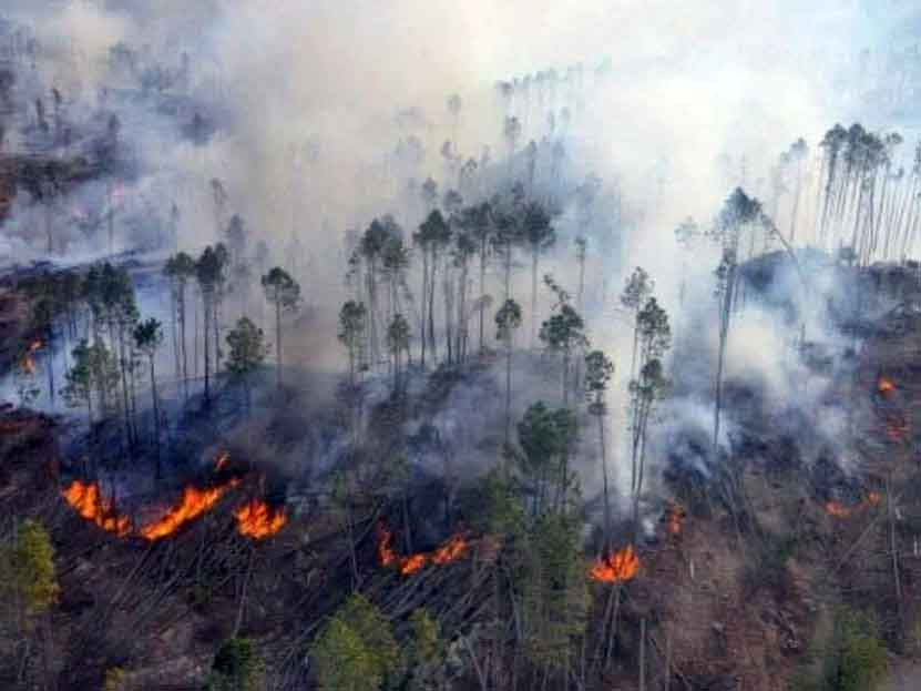 Alarma incendio en la Mixteca Alta de Oaxaca | El Imparcial de Oaxaca