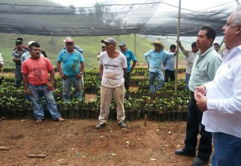 Esperan la aprobación de proyectos para la Cuenca | El Imparcial de Oaxaca