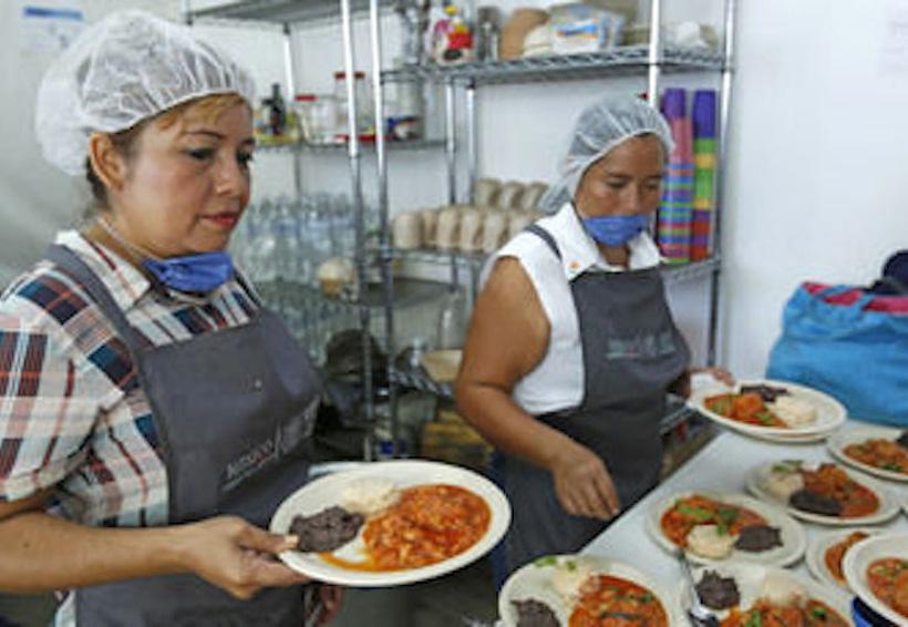 DIF brinda a comedores gallinas para huevo y carne | El Imparcial de Oaxaca