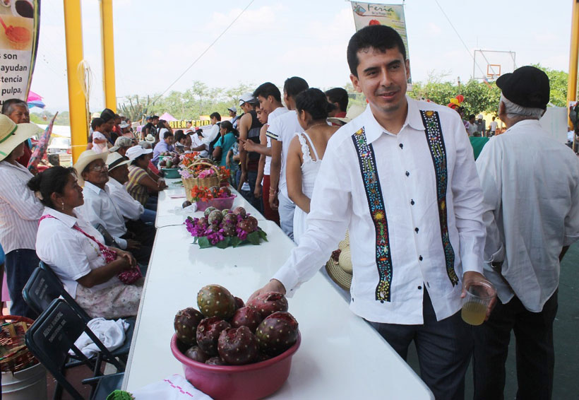Realizan la primera exportación de pitaya a Estados Unidos   El Imparcial de Oaxaca