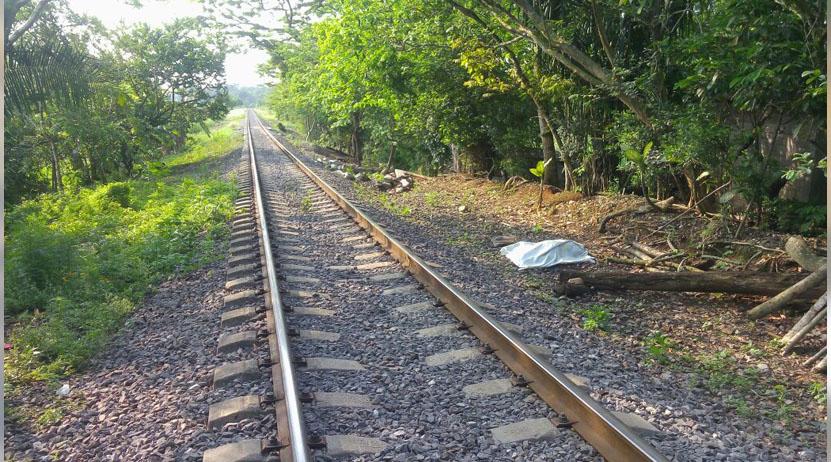 Triturado por el ferrocarril en San José Cosolapa, Oaxaca | El Imparcial de Oaxaca