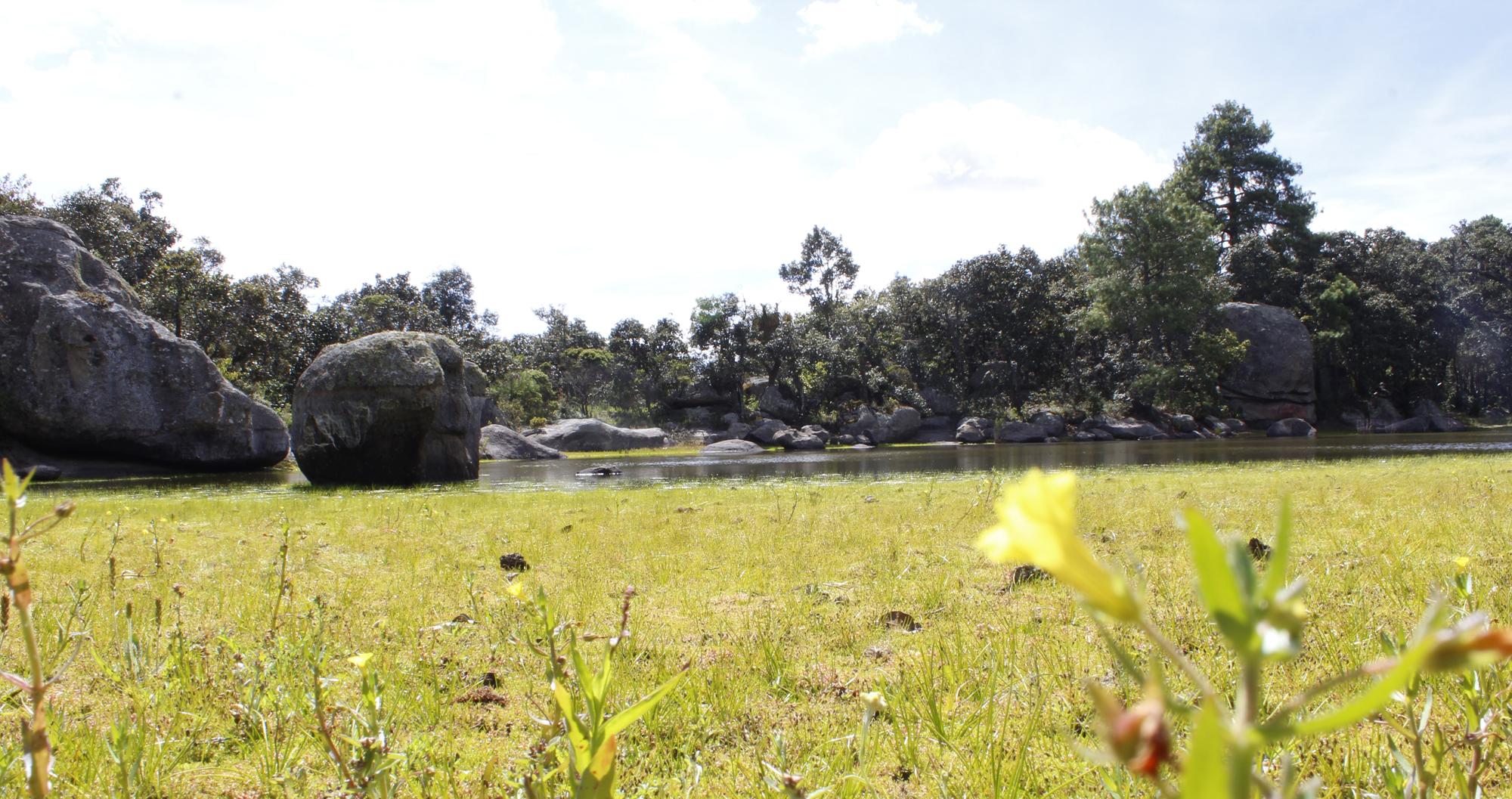 Mitla, territorio sagrado   El Imparcial de Oaxaca